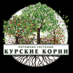 Курские корни | Питомник растений